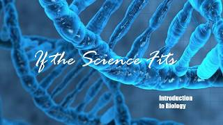 If The Science Fit - Biology - 2 - The Scientific Method