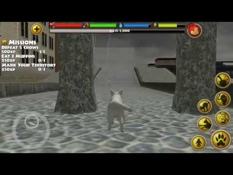 Stray Cat Simulator gameplay for android