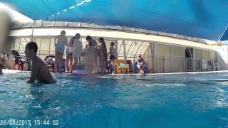 Море волны и басейн :)(Это видео создано с помощью видеоредактора YouTube (http://www.youtube.com/editor), 2015-08-23T03:45:53.000Z)