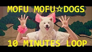 """Original video: MOFU MOFU☆DOGS """"Waiting4U〜モフモフさせてあげる〜"""" ..."""