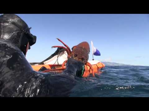 Wettie TV - September Adventure Spearfishing In New Zealand 2015