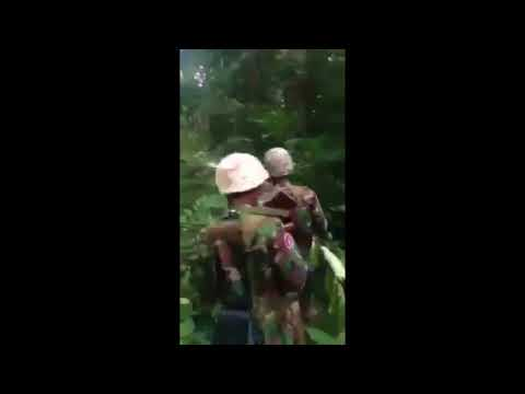 Army Traveling in the Forest Cambodia
