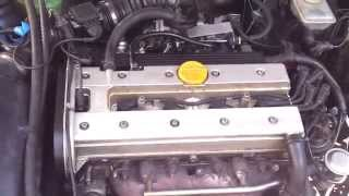 X20XEV - New head gasket and replacement exhaust Camshaft - 216 xxx km