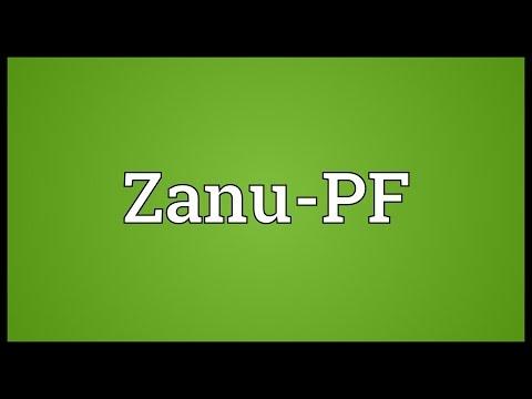 Zanu-PF Meaning