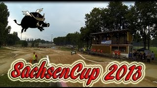 Sachsencup 2013 by MSC-Halle .....Buggy 1:8, Truggy 1:8, Shortcourse (c) FlyingKeiler