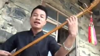 Giấc Mơ Trưa ( Đàn Tính) - Nông Công Nam (Cover)