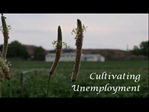 Cultivating Unemployment - The Documentary