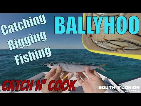 Catch and Rig Ballyhoo | Fishing Offshore Key Largo | Catch N Cook