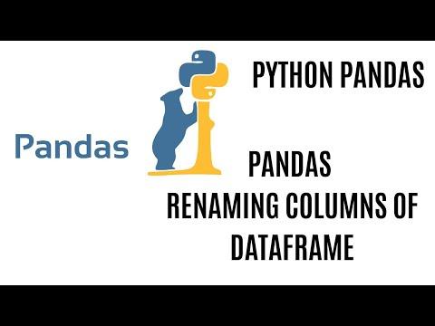 Renaming Columns In Pandas DataFrame Using Python