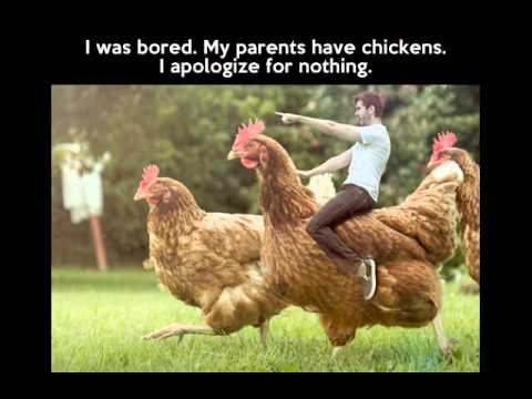 Chicken song 5 minutes and FUNNY CHICKENS !!! - YouTube