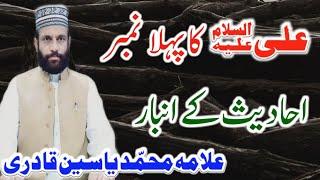 Ali Ka Pehla Number Ahadees Ky Anbaar Wakil Ahelbait Allama Muhammad Yasin Qadri