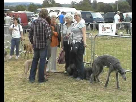 Welsh Game Fair 2009