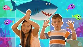 Baby Shark | Songs for Kids