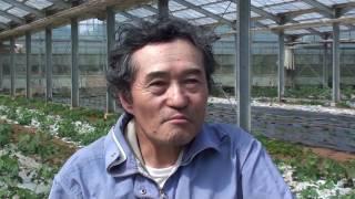 有機生産者インタビュー 銚子高野施設利用組合 林 俊さん