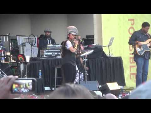 Erykah Badu at Taste of Chicago 2015 - Danger!