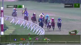 Vidéo de la course PMU PREMIO GUERRERO FAMOSO