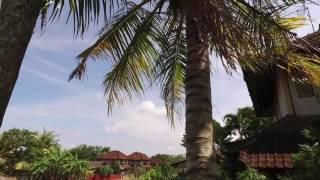 Индонезия, остров Бали 2016, Убуд Пенестанан. Bali 2016 Ubud Penestanan(Relax видео прогулка по Пенестанану, эта тропическая деревня расположилась в самом центре Бали в Убуде, среди..., 2016-07-13T12:39:17.000Z)
