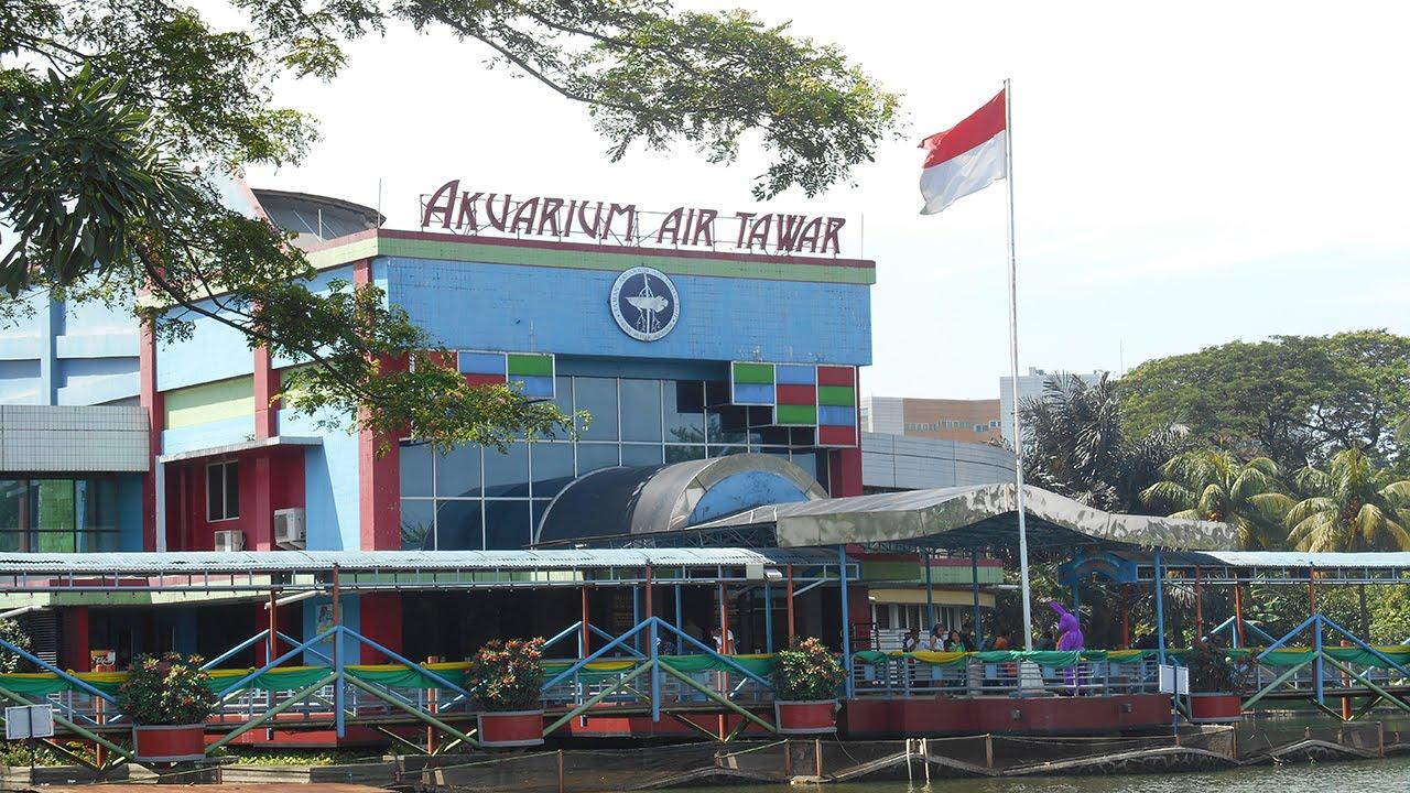 Akuarium Air Tawar TMII - Taman Mini Indonesia Indah - YouTube
