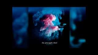 The Pineapple thief - Warm seas (The Acoustic Sessions)