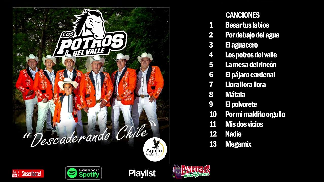LOS POTROS DEL VALLE - Disco completo - Música Ranchera