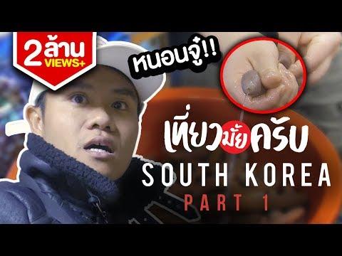 เที่ยวมั้ยครับ EP.8 เที่ยวเกาหลีใต้ เจอดาราตัวจริง!!! (Part 1/2)