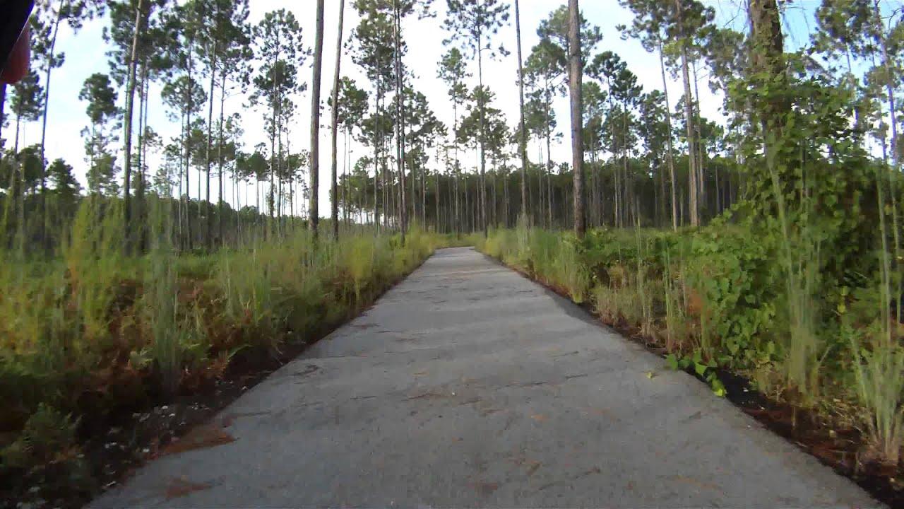 Conservation Park Panama City Beach