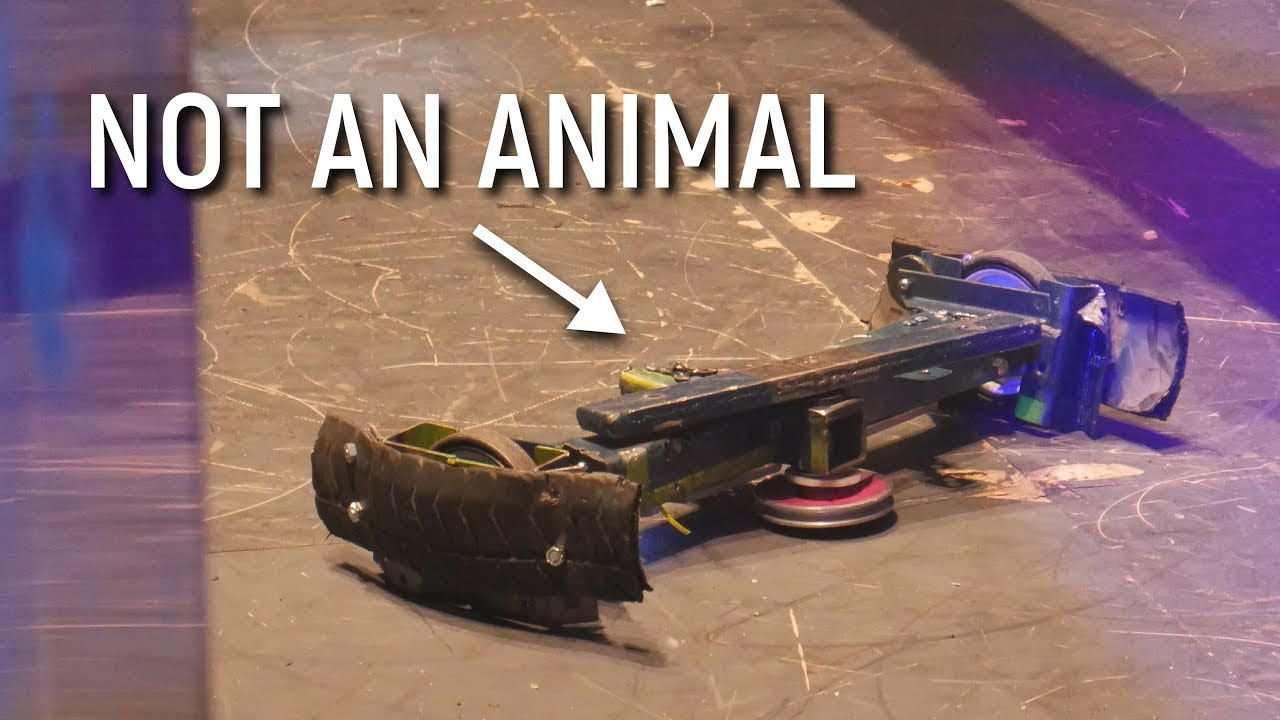 YouTube Mistakes Combat Robots as Animal Cruelty?! Not Impressed.