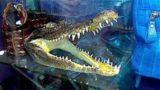 Изделия из Крокодильей кожи и другие сувениры