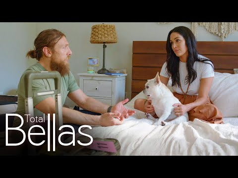 Brie Bella Tells Daniel Bryan She Doesn't Want Another Baby: Total Bellas, April 2, 2020