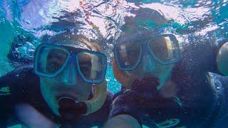 Great Barrier Reef- Cairns - Vlog #43