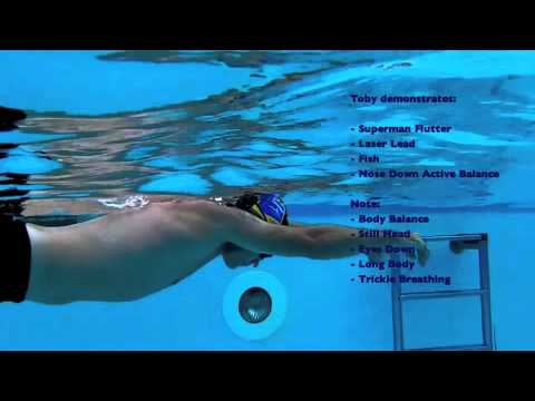 The basic principles of a freestyle stroke
