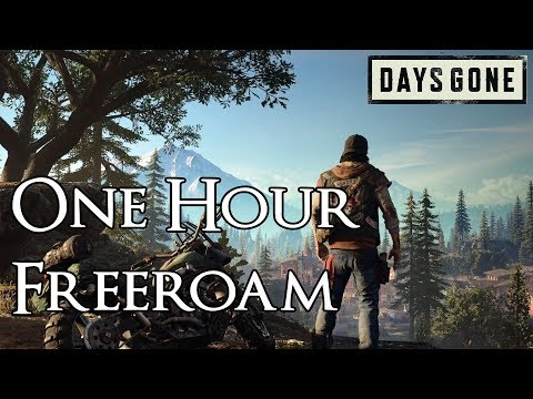 Days Gone - 1 Hour of Free Roam Exploration