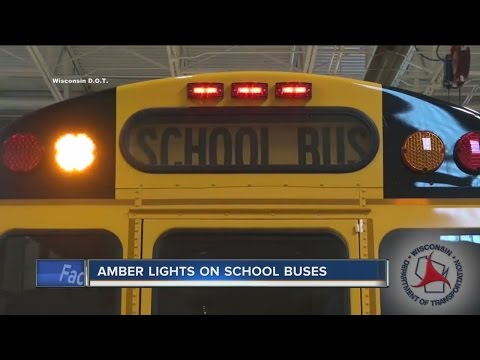 Be aware: New school bus law in effect