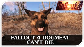 FALLOUT 4 Dogmeat Can't Die