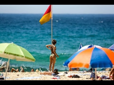 Sydney hits its highest temperature recorded since 1939 with Penrith reaching 47 3C