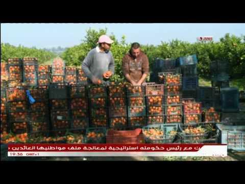 Agrumes en Algérie, La 3G et 4G dans l'agriculture.
