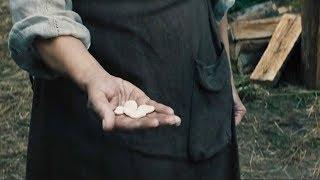 【穷电影】小男孩用牛换了些奇怪的豆子,妈妈生气的丢掉,却发生可怕的事情