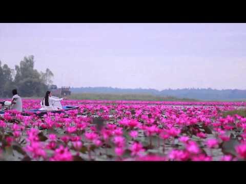Озеро красных лотосов, Удонтхани, Таиланд