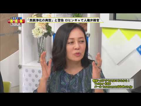Japanese journalist Arimoto slams BBC and Japanese media for Rohingya coverage