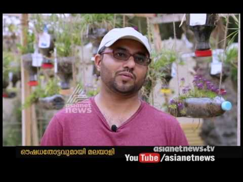 Kozhikode native's Medical plant Garden at Dubai | Gulf News