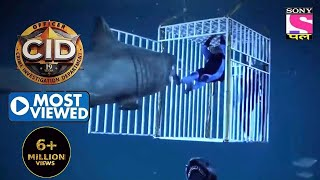 Daya Fights A Shark   CID   Most Viewed