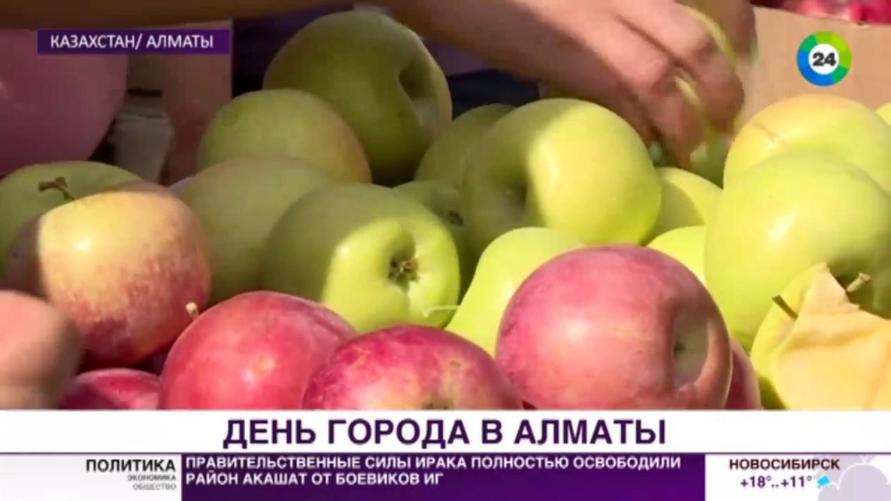 Техника для дома в chocomart ❤ лучшие цены на холодильники в казахстане ✓ возврат товара в течение 14 дней ✓ большой выбор холодильников с официальной гарантией!