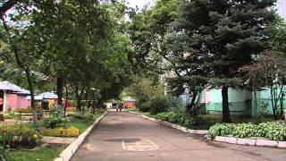Посади свое дерево, прошло озеленение территорий нескольких детских садов Краснознаменска(, 2015-09-12T09:36:55.000Z)