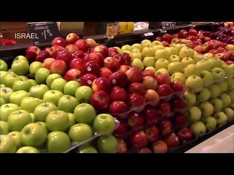 World Amazing Modern Agriculture: Apple Industry