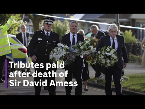 Political leaders pay tribute to Sir David Amess