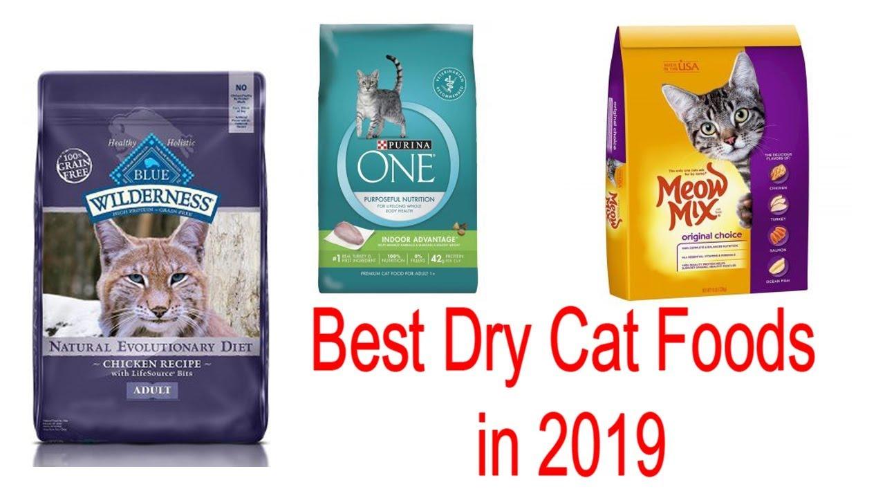 Top 10 Best Dry Cat Foods Of 2019 Buy From Amazon Youtube Dry Cat Food Cat Food Best Cat Food