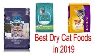 Top 10 Best Dry Cat Foods of 2019 | Buy from Amazon