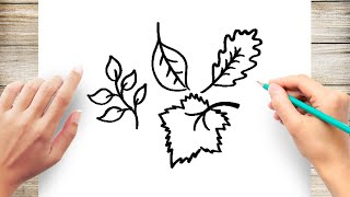 How to Draw Fall Leaves Step by Step