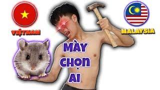 Tony | Thú Cưng Dự Đoán Chung Kết Bóng Đá -  Prophet With Animals