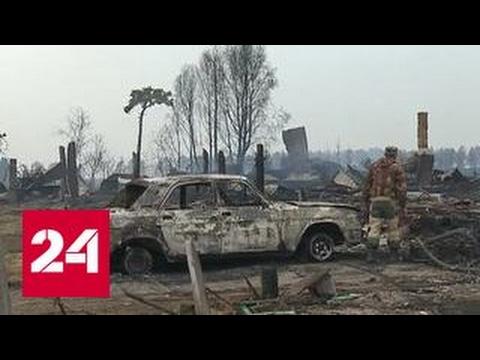 В Сибири целая деревня сгорела из-за поджога сухой травы